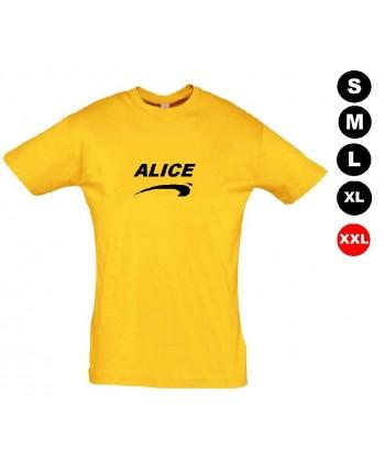 Déguisement Alice de nice