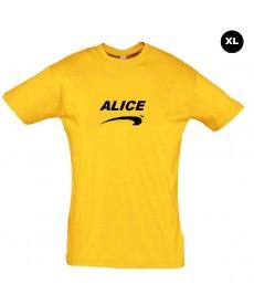 Déguisement Alice de nice grande taille