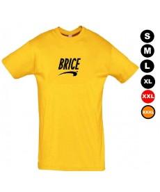 Tee shirt de Brice de Nice