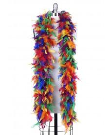 Boa plumes multicolores