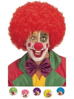 Perruque de Clown maxi