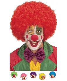 Perruque de Clown maxi